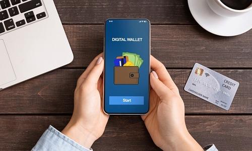 Vietnamese spend average of $21 daily via e-wallet