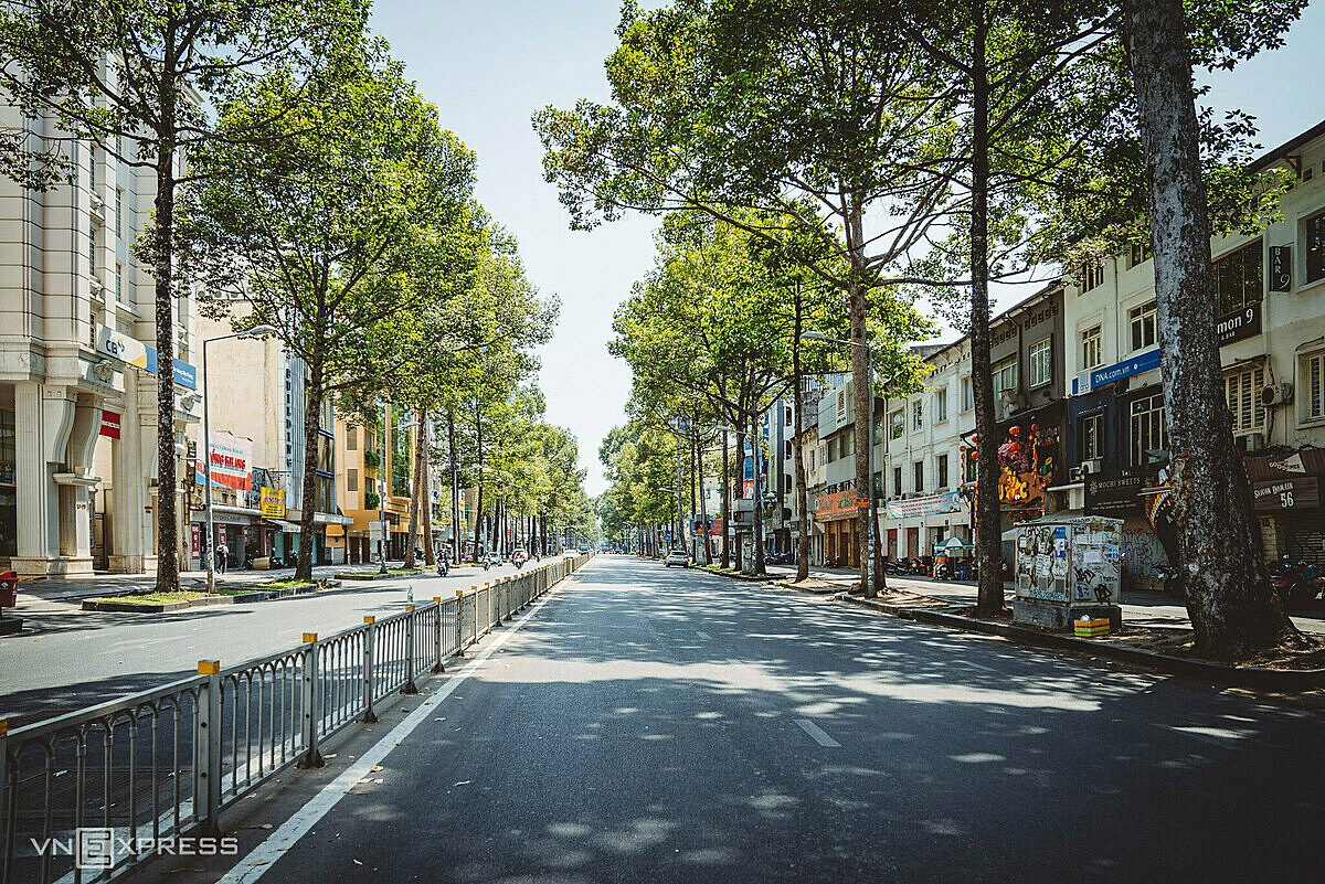 On both sides of the street, rows of tall trees provide shades to the deserted Tran Hung Dao Street in Disitrct 1.