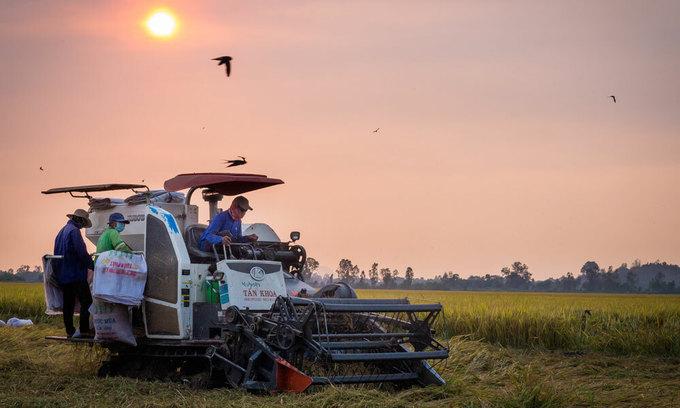 Vietnam growth among Asia's highest despite Covid-19 slump: ADB
