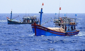 US 'seriously concerned' by China's sinking of Vietnamese fishing boat off Paracels