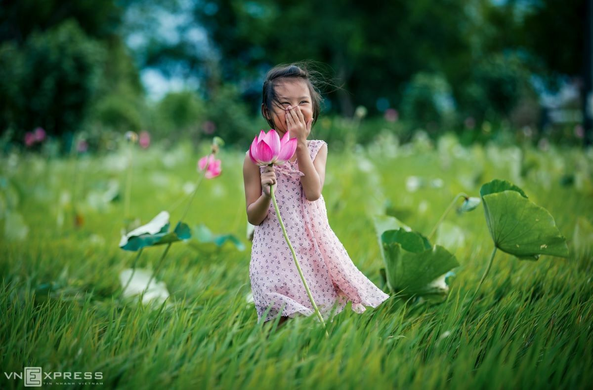 A happy girl holds a lotus in a rice-lotus field. Lotuses will bloom until the end of June.
