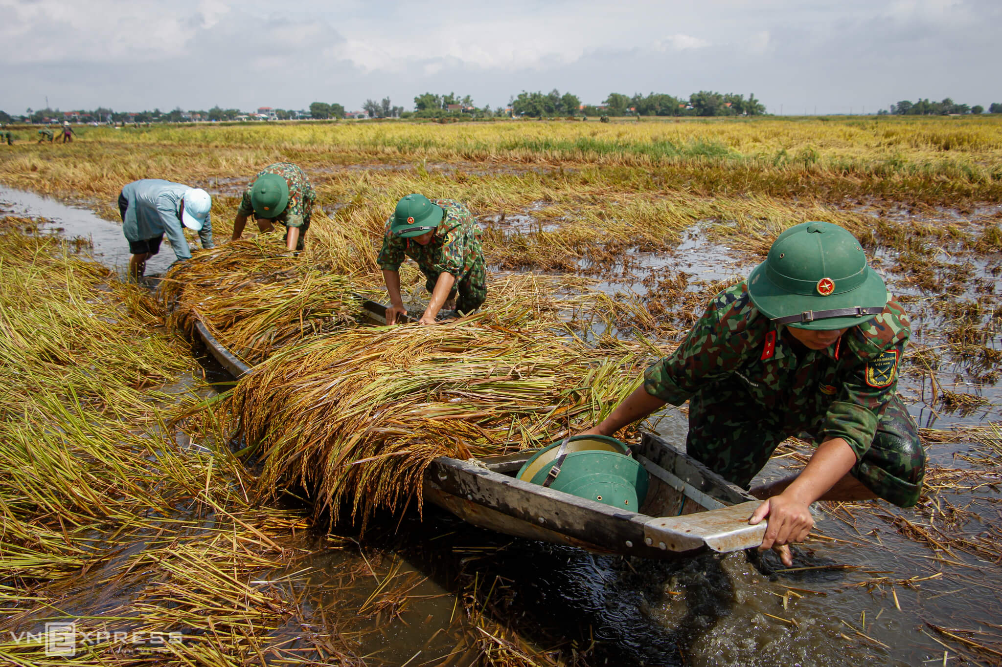 Soldiers help farmers harvest rice in flood-ravaged central Vietnam