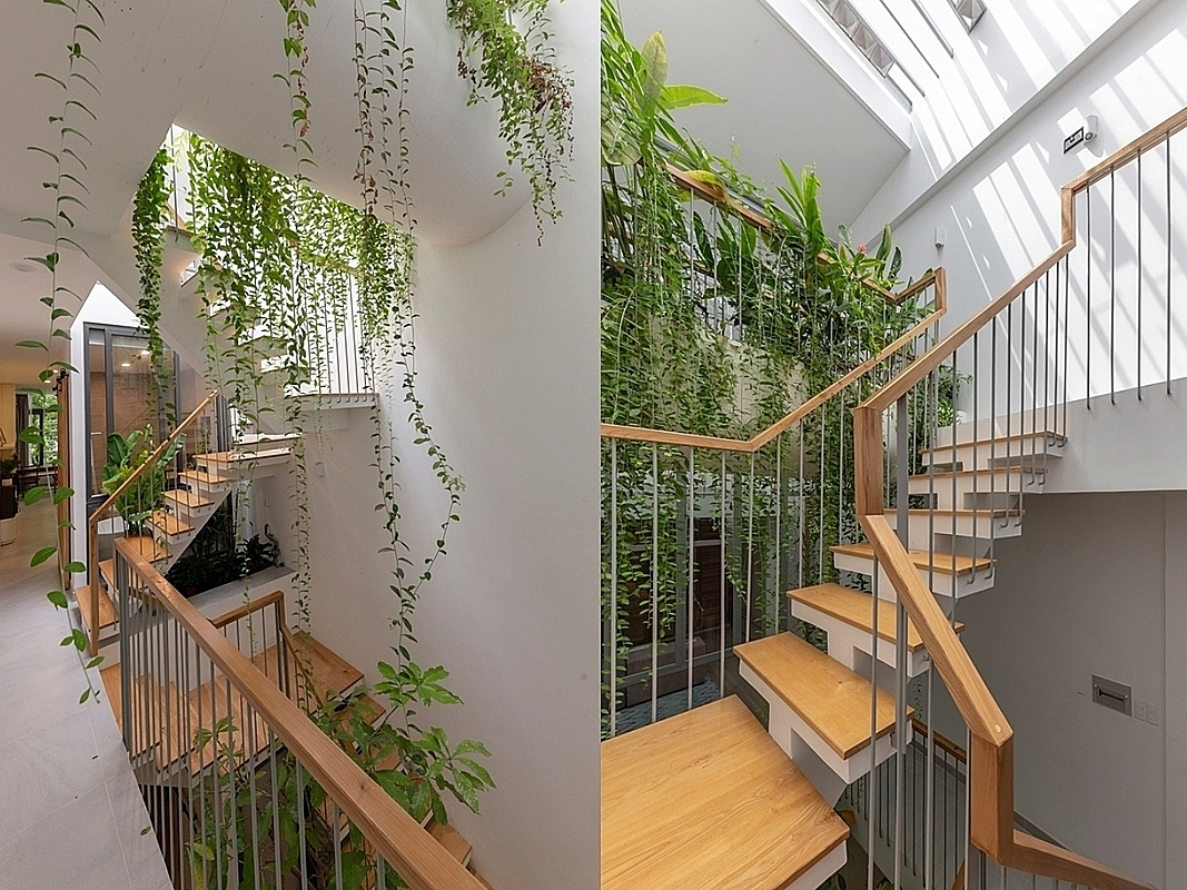 The atrium is filled with sunlight and greenery, becoming an inner oasis in the tube house.