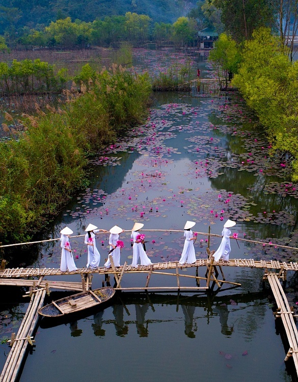 The shot captures a group of Vietnamese women in traditional ao dai carrying water lilies and walking on a bamboo bridge across Yen Stream leading to Huong (Perfume) Pagoda in Hanoi. Photo taken by Tran Quang Quy.