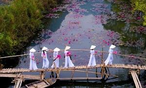 Vietnamese photographer wins Agora's Spring photo contest