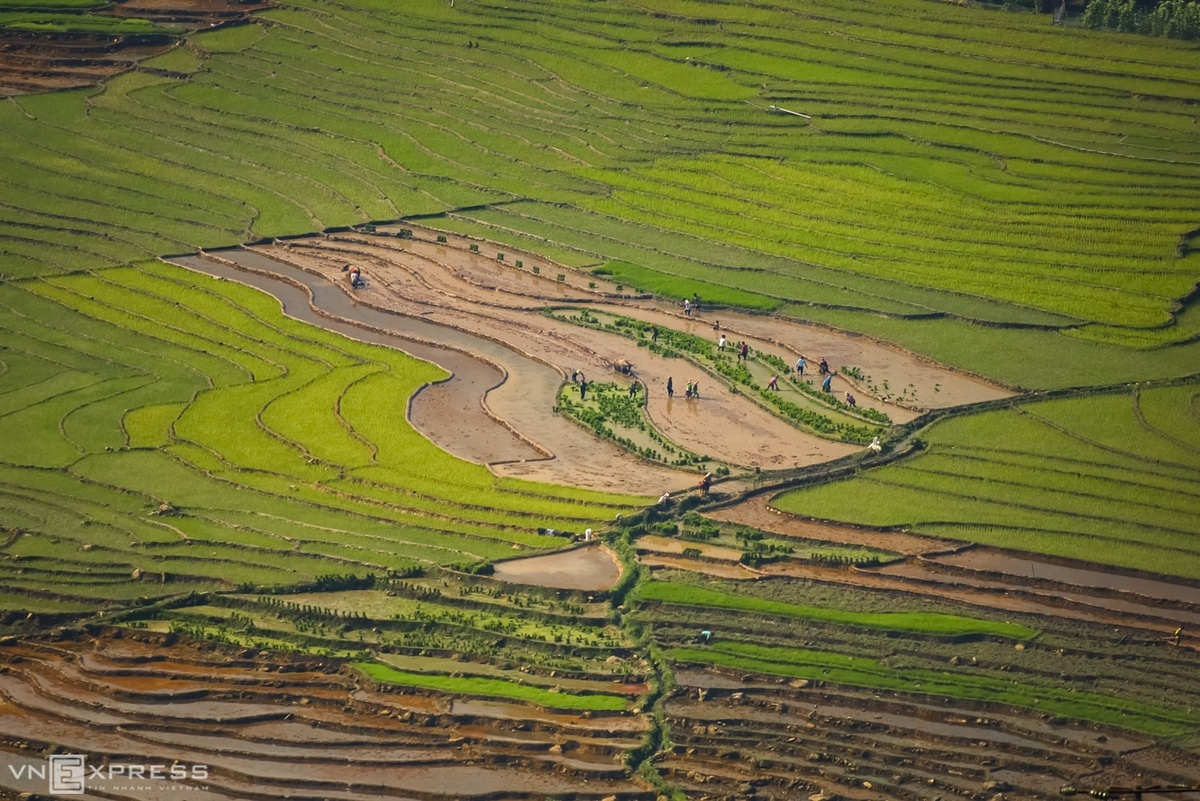 A cultivated look at northern Vietnam contours