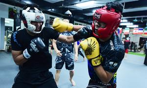 Vietnam Mixed Martial Arts Federation set up