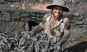 Charcoal a Binh Thuan mainstay