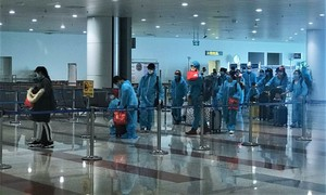 310 Vietnamese citizens repatriated from 10 EU nations