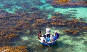 Ly Son Island a lesser-known gem of central Vietnam