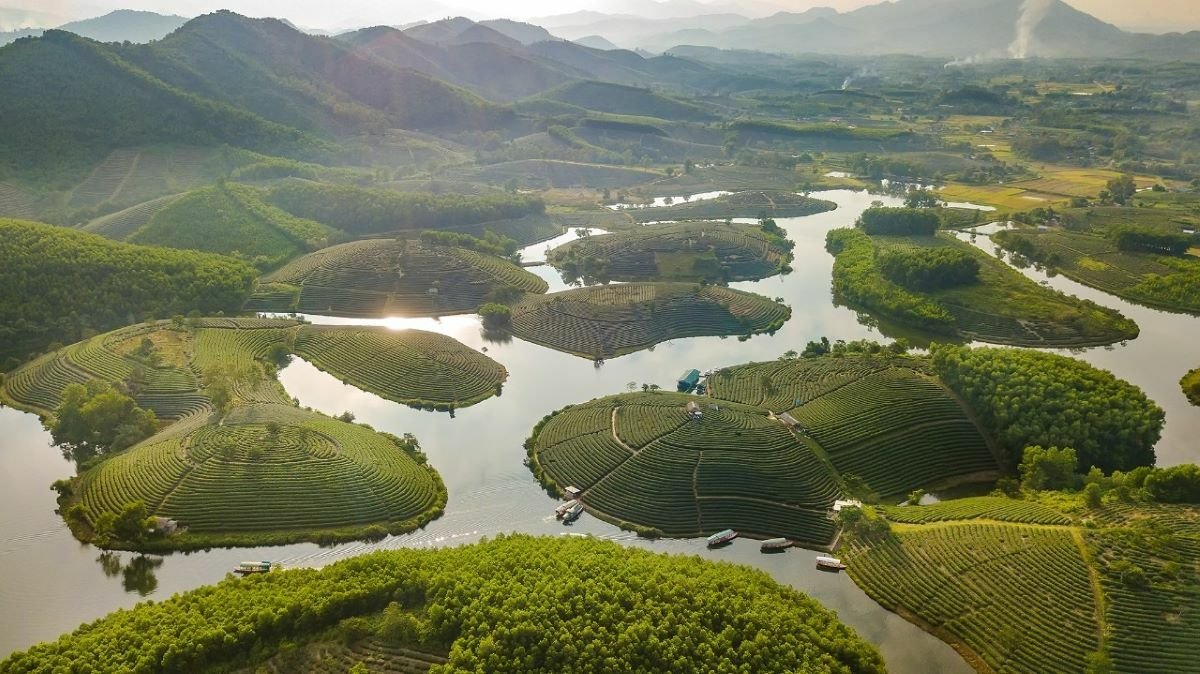 The Thanh Chuong tea hills in Thanh Chuong District, Nghe An Province, 330km south of Hanoi. Photo by Xu Kien.