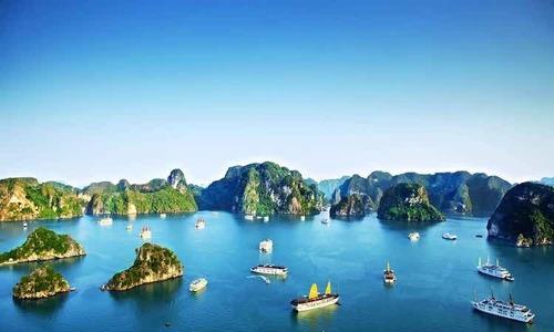 Ha Long Bay cruises regain bustle