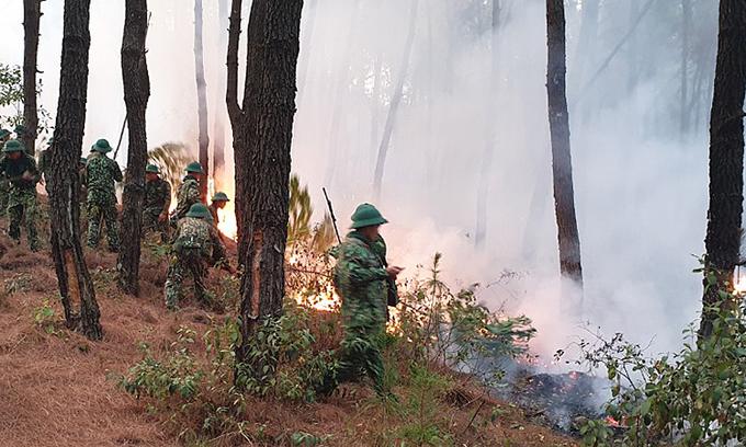 Nghe An battles massive forest fire with firebreaks