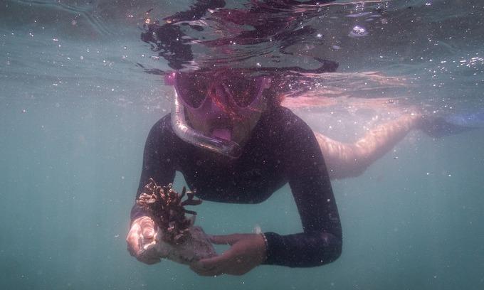 Vietnamese volunteers corral efforts to save corals