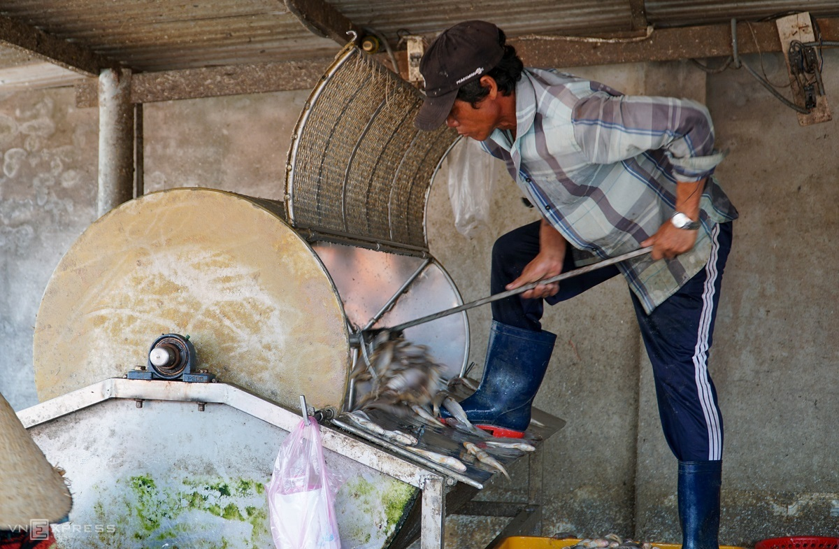 First, the fish are dropped into a scale remover. In the past, we had to remove the scales by hand which was hard work and took a lot of time. Now, the scale remover takes just a few minutes to strip hundreds of kilograms of fish, said Le Tam, a 45-year-old worker.