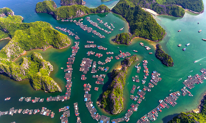 Cai Beo floating village is a must-visit place on a tour of Lan Ha Bay in Hai Phong City. Photo by Shutterstock/Jimmy Tran.