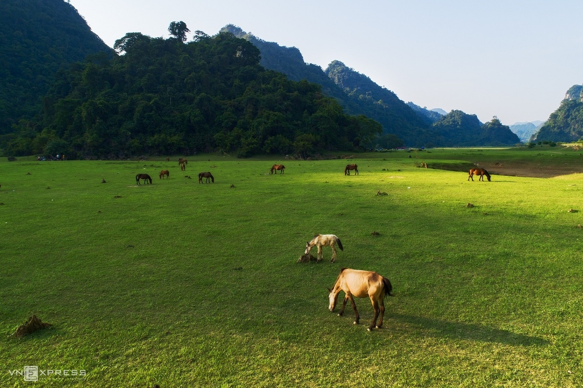 Huu Lien: where the grass is greener on this side
