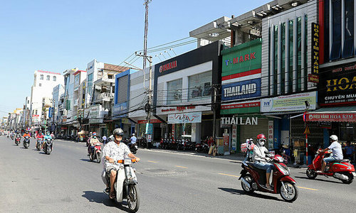 Greed beats green as Da Nang falls short of tree cover