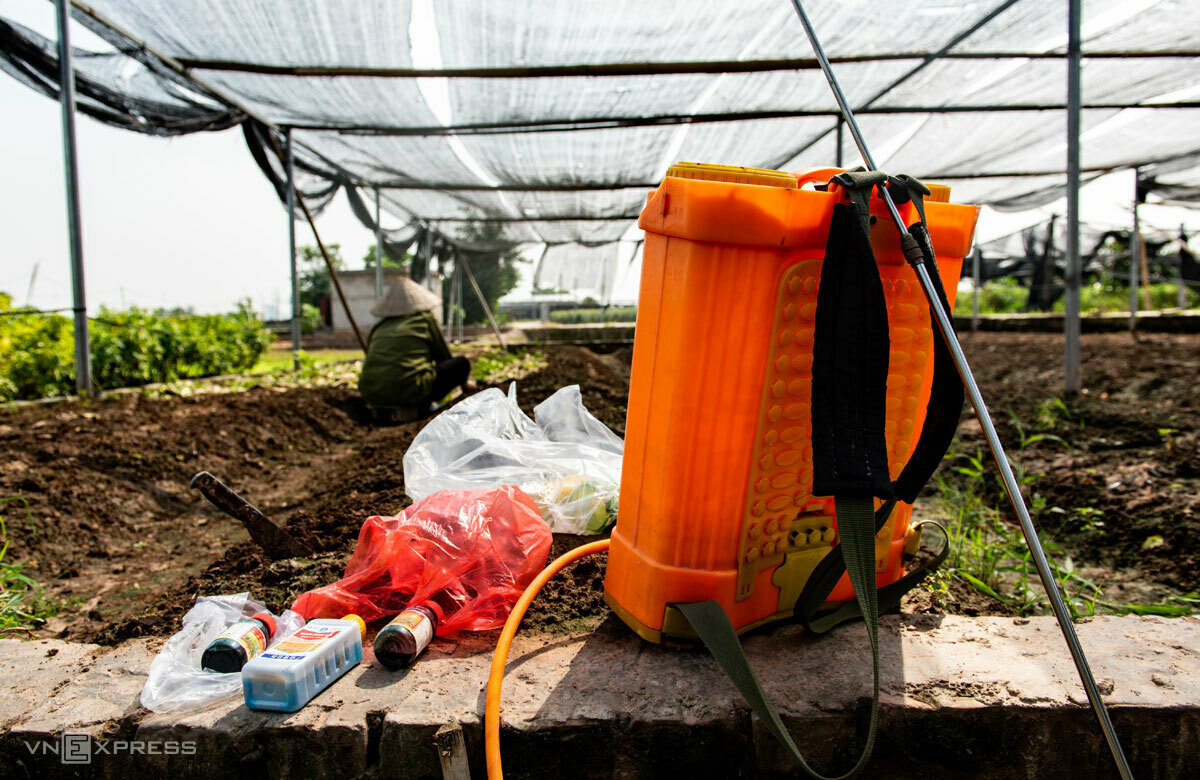 Theu clears her garden before planting lettuce. Photo by VnExpress/Thanh Hue.