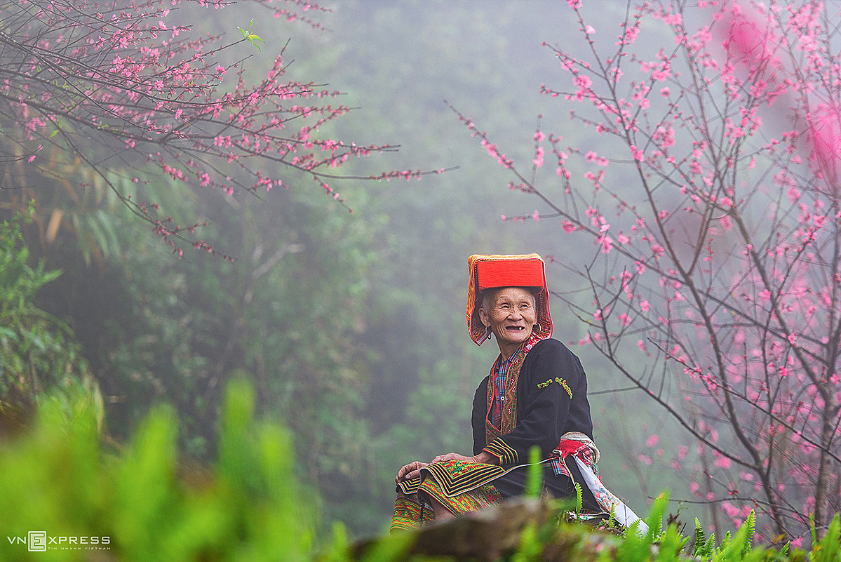 An elderly man from Dao ethnic group, a minority group that account for 95 percent of local population, in spring cherry blossom season.
