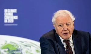 Belgian scientists name Vietnamese mantis after Attenborough