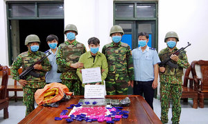 Vietnam seizes 16.8 tons of drugs, 1.1 tons of ivory in 5 years
