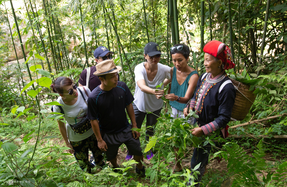 Resident take advantage of the local scenery to start building homestays to serve tourists. Tourists in Nam Cang in addition to exploring nature will be able to eat, sleep, learn about the life of the Mong and Dao ethnic groups from their customs to their traditional occupations.