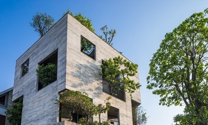 'Hanging gardens' add lush appeal to Vietnamese homes