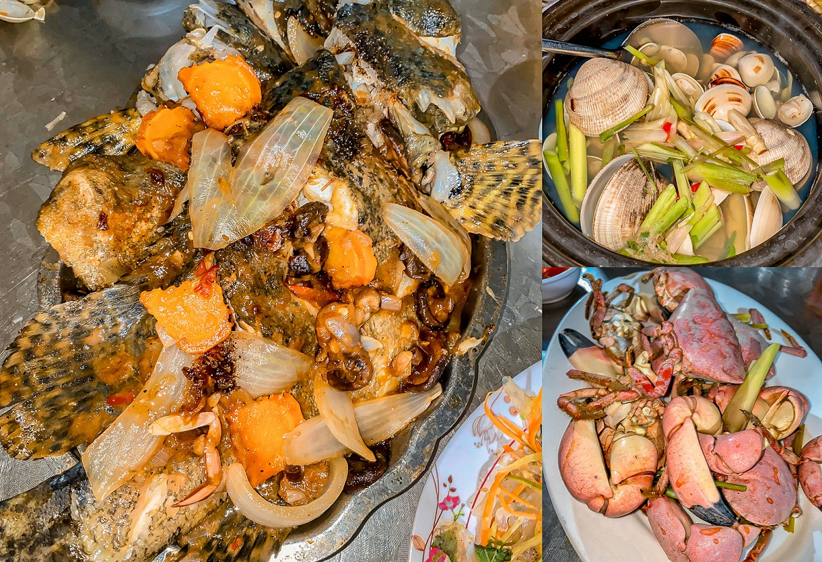 A close-up look at a few local seafood dishes at Dong Hoi beach.