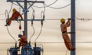 Vietnam advised to restart nuclear energy program