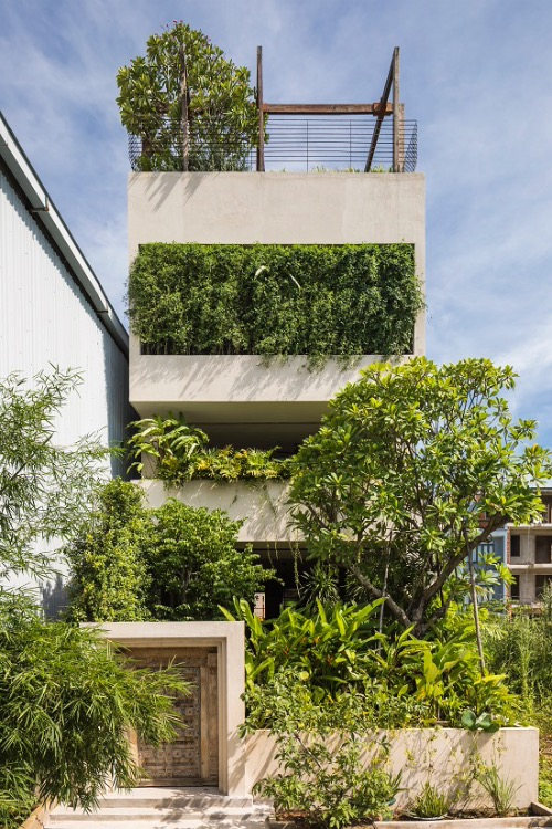 Located by the river in Saigons District 2, the 200-square-meter house becomes an urban forest offering homeowners repose from their rat race.