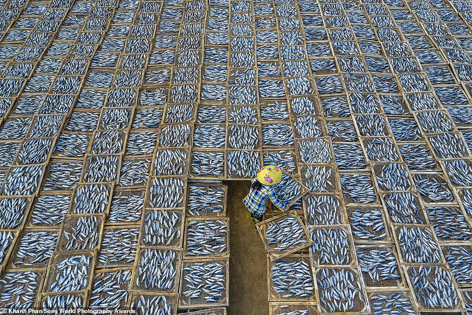 Aerial shot of a woman drying fish at Long Hai fish market in Vietnam snapped by Khanh Phan. Photo by Sony World Photography Awards/Khanh Phan.