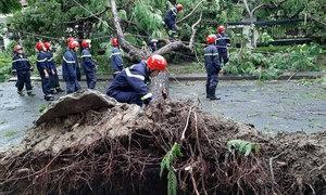 One dead as Storm Noul hits central Vietnam