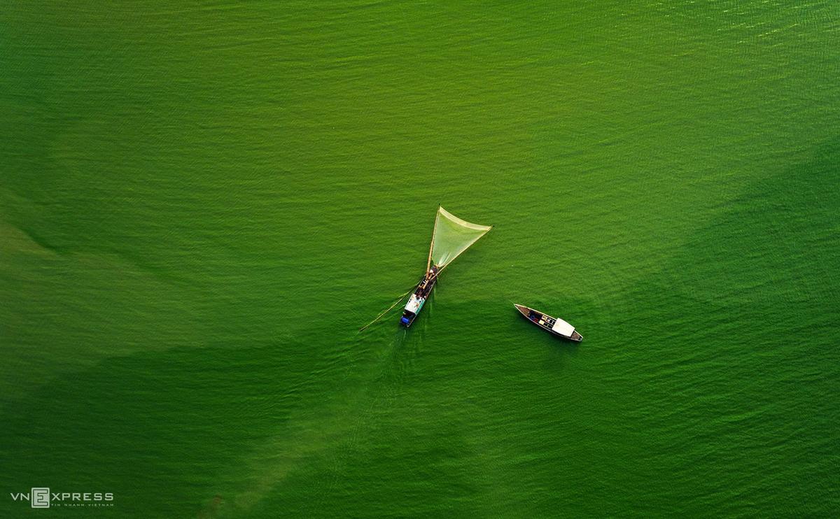 Southern Vietnam lake wears emerald garb in algae season