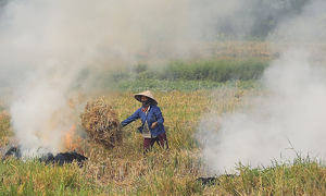 Hanoi to cease straw burning starting 2021