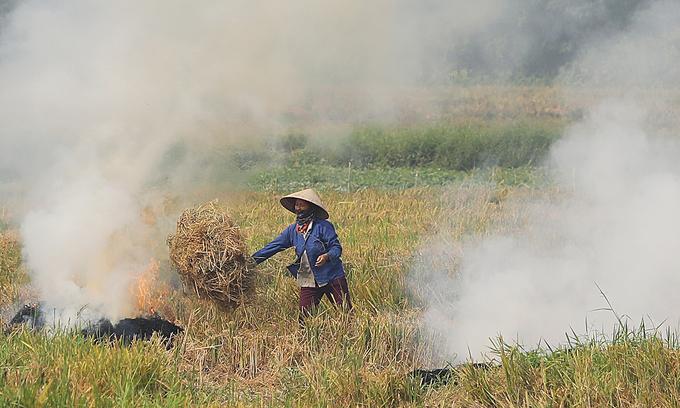 Hanoi to cease straw burning starting 2021