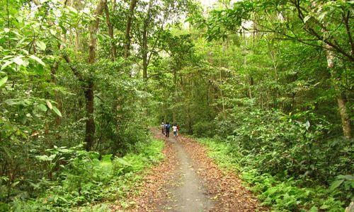 Cat Ba national park offers range of trekking options
