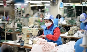 EVFTA tariff incentives for Vietnam very attractive: VCCI