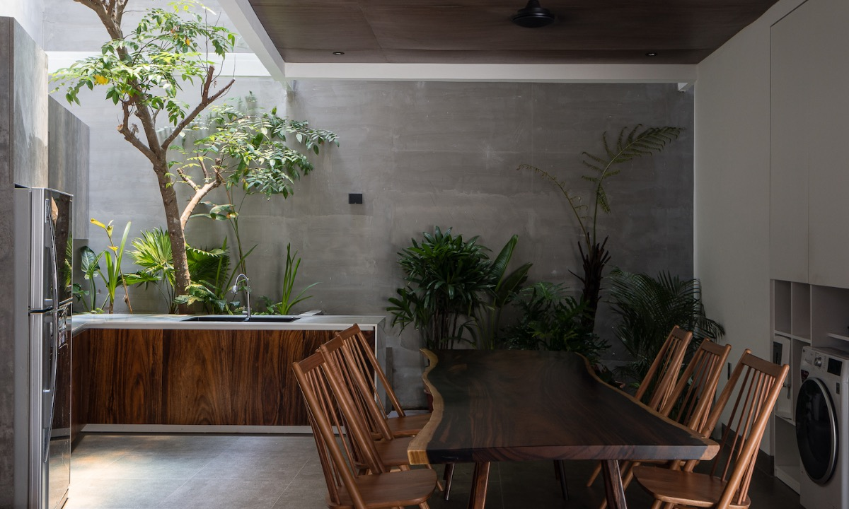 An atrium allows natural light to enter, which also benefits plants inside the house.