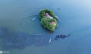 Vietnamese couple make a home on a homemade island