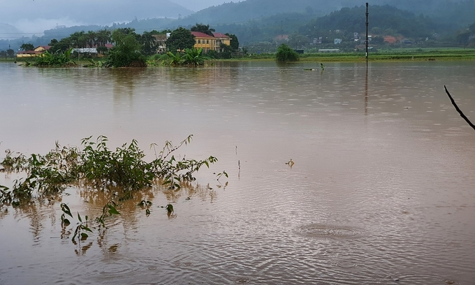 Toddler dies as record rainfall sweeps northern province