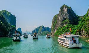 Three Ha Long pimps probed over elite cruise ship service