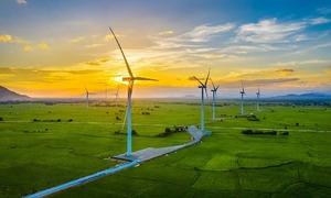 Vietnam to stop licensing of wind power plants