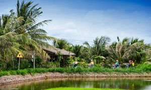 Discover Con Chim islet in Tra Vinh