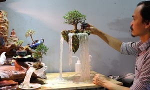 Hanoi artist transforms bonsai trees into floating islands