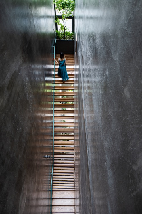 An 85-meter-square house in Saigons District 7 features a wooden staircase that gives its homeowners the feeling of walking up to paradise.It is structured with wooden bars designed between two walls along the length of the house. The staircase is not only a transportation axis but also a ventilation opening for the construction. Photo by Quang Dam.