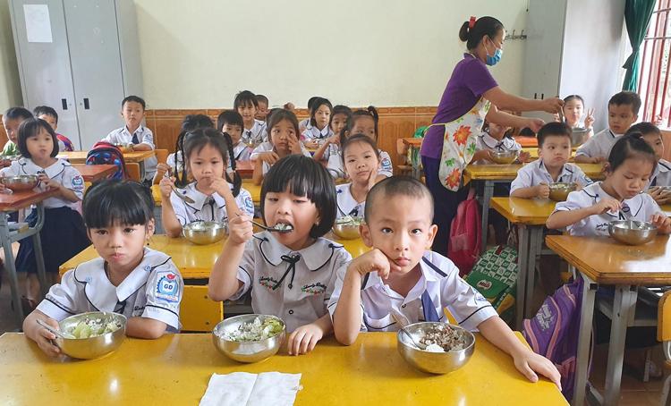 Vietnam continues to improve anti-hunger performance – VnExpress International