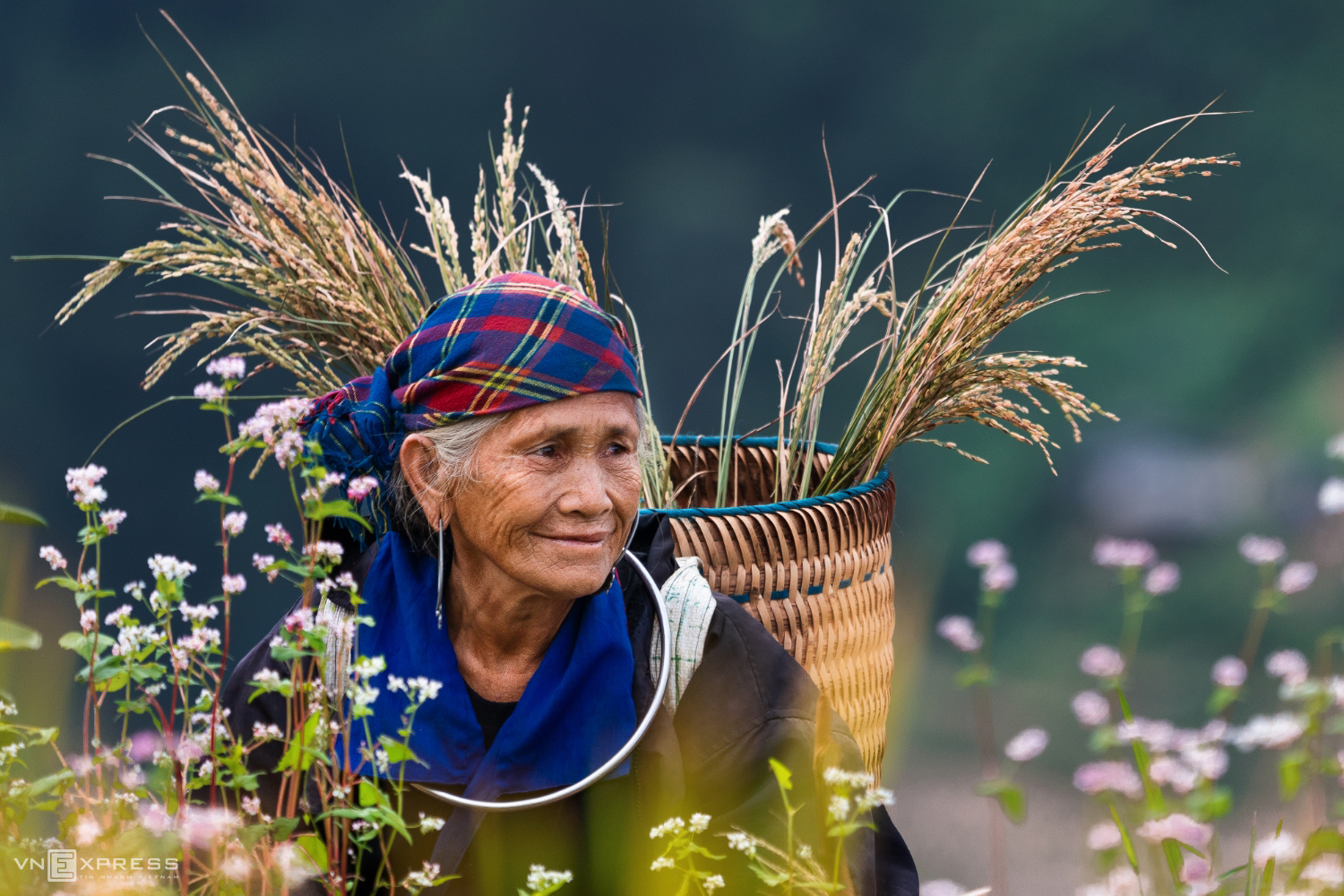 The beauty of Vietnam as reflected by its women