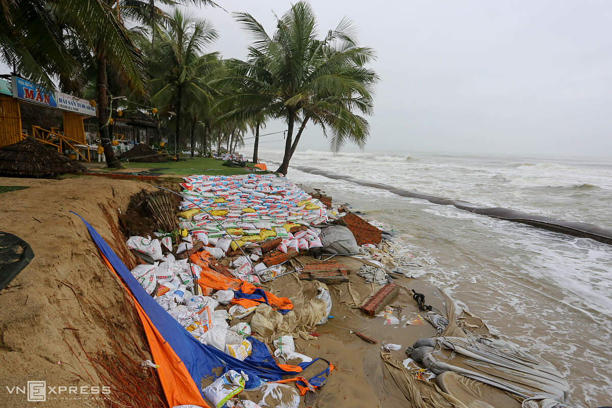 Restaurants along Cua Dai beach used canvas to cover the erosion area and then put sandbags overlapping it. This is a temporary solutionto prevent seawater intrusion, if not, tens of meters of land will be washed away and restaurants and resorts collapsed, said a local resident.