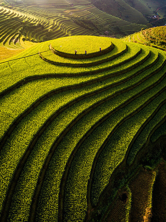 Shots of Vietnam shine at int'l aerial photo contest - 4